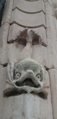 Hull stone fish